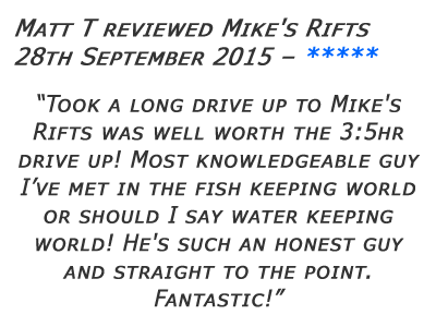 Mikes Rifts Review 3