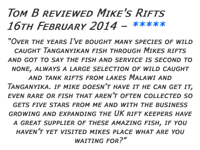 Mikes Rifts Review 4