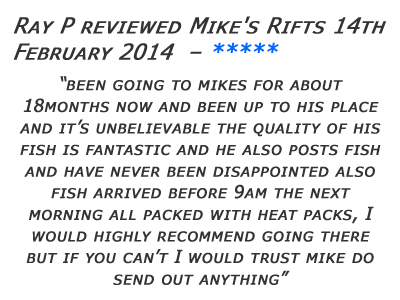 Mikes Rifts Review 8