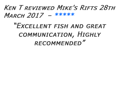 Mikes Rifts Review 10