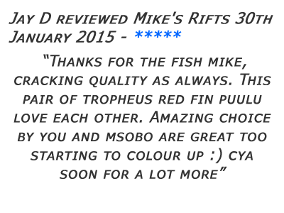 Mikes Rifts Review 15