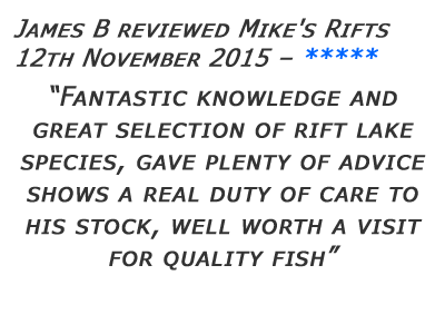 Mikes Rifts Review 18