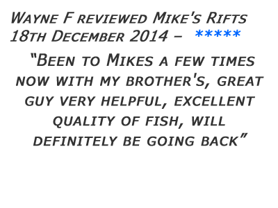 Mikes Rifts Review 21