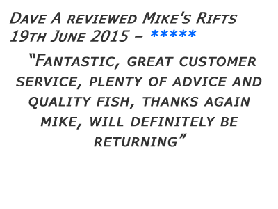Mikes Rifts Review 27