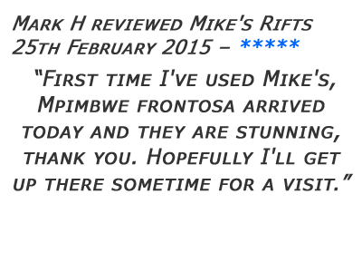 Mikes Rifts Review 28